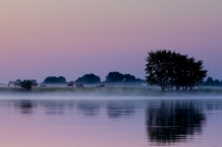 Morgenröte an der Elbe