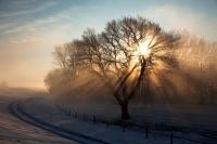 nach-dem-nebel