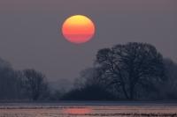 Sonnenaufgang am Heisterbusch