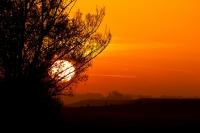 Sonnenaufgang am Deich