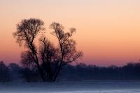 Winterstimmung kurz vor Sonnenaufgang